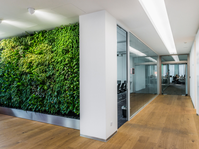 Phillips Office Interior Cigler Marani Architects A S Marani